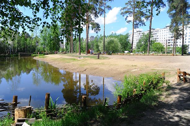 черняевский лес фото пермь